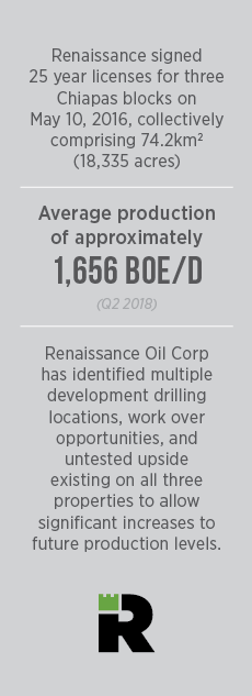 Renaissance Licenses Q2 2018